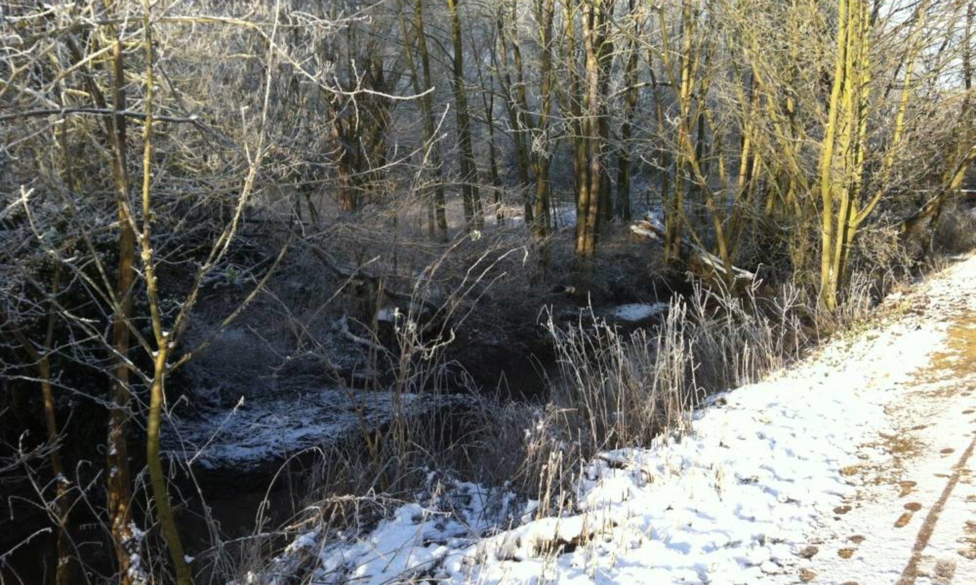 Bury Water Meadows Group
