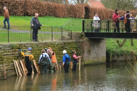 River restoration project at Abbey Gardens March 17 (12)