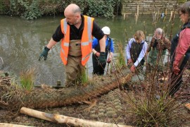 River restoration project at Abbey Gardens March 17 (27)