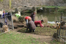 turf laying in Abbey Gardens March 17 (7)