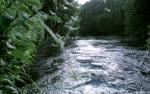 chalk streams England